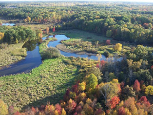 Fall Color From Westwind Balloon Co Island Lake South Lyon, Michigan